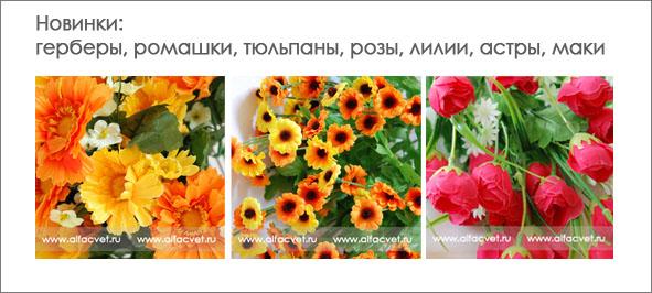Цветы оптом в воронеже цены базы
